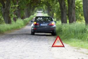 Tier überfahren: Sichern Sie zuerst die Unfallstelle und informieren Sie Polizei und Jäger.